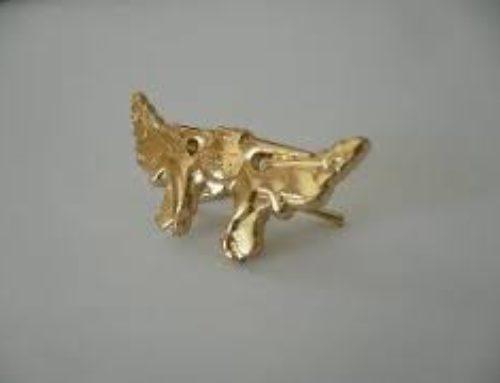 Le Sphénoïde d'Or